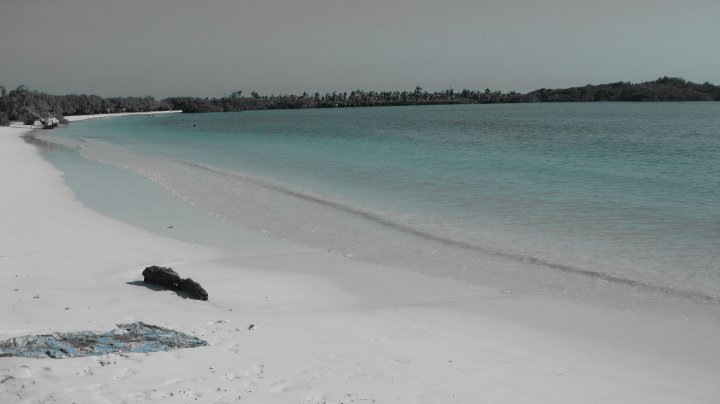 Tortuga bay, Santa Cruz, Puerto ayora, why are the Galapagos islands unique