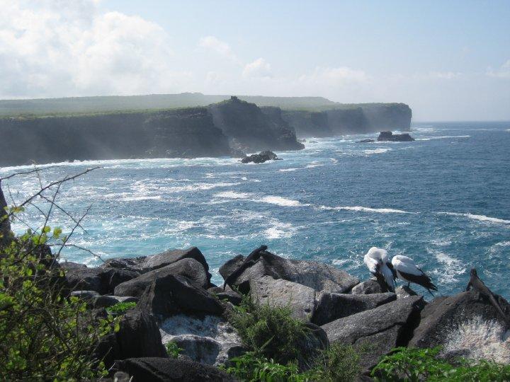 espanola island galápagos