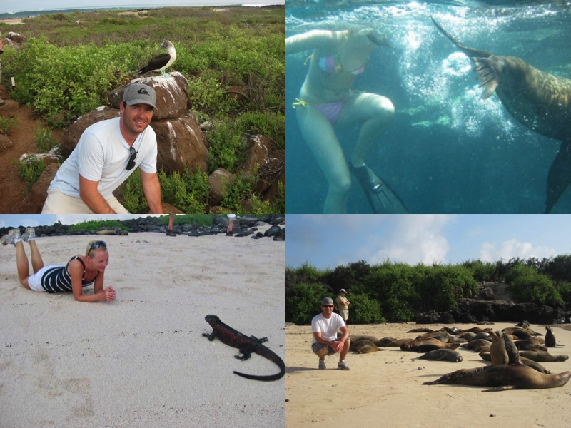 Galapagos wildlife, why are the Galapagos islands unique