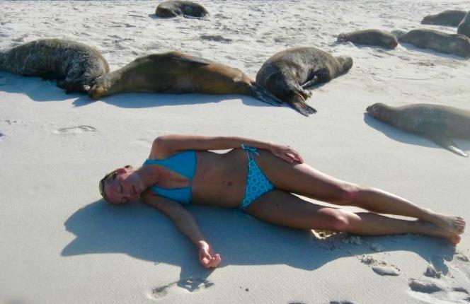 sea lions on espanola island Galapagos