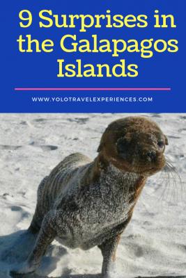Galapagos islands, Espanola island